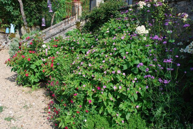 Labastrou, garden July 22 2014 - 23